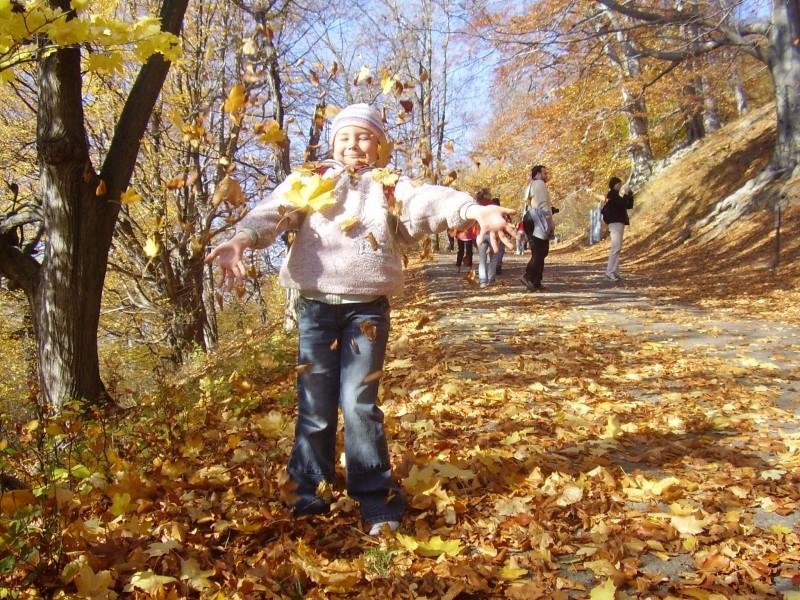 Po  zarostlém chodníčku tentokrát spadaným listím