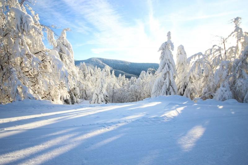 Na běžkách po zimních hřebenech Beskyd