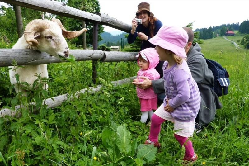 Výlety v Beskydech plné zážitků. Poradí kam s dětmi, i těmi nejmenšími?