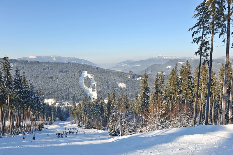 Atomic Salomon Ski Testing 2014