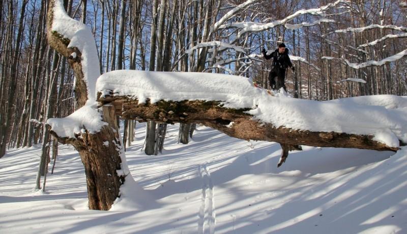 Skialpový a lavinový kurz v Beskydech