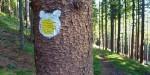 Ostravice nabízí turistické trasy pro děti i rodiny s kočárky