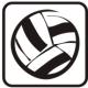 míčové sporty