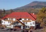 Krytý bazén a wellness - hotel Prosper