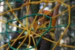 Tarzánie - lanový park