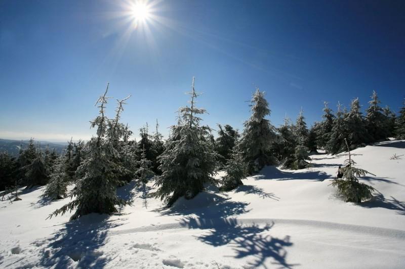 Lyžařské běžecké trasy Bílá